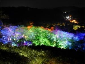 御船山楽園 森のアート展3